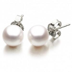 9.5mm South Sea Pearl Stud Earrings